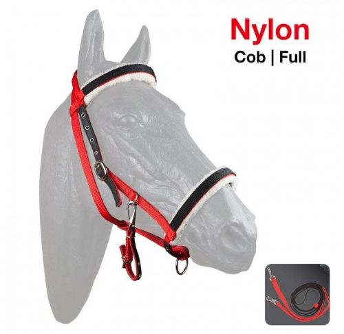 Economy Halter-bridle with rubber reins